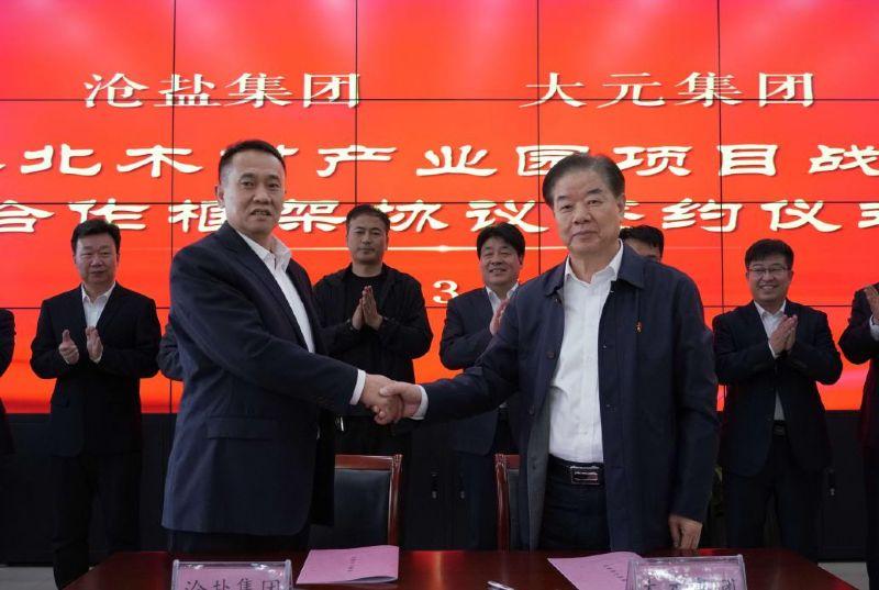 公司与如何买球赛大元集团签订 战略合作协议